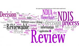 NDIS Review Flowchart|Lifelong Pathways